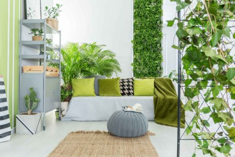 A living room with green cushions, a living wall of green, with more plants on the bookcase, and some ivy in the foregound