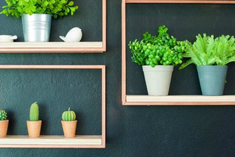 a series of box shelves with artificial plants on a dark wall