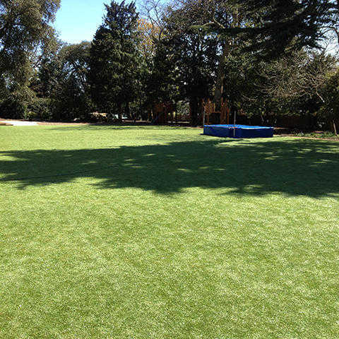 Fresh_2_namgrass-artificial_Grass_garden_480x480