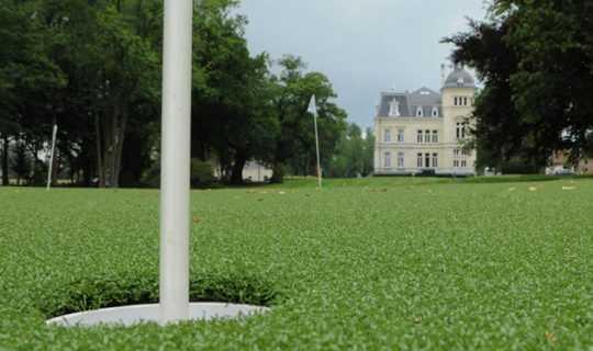 fake grass golf course