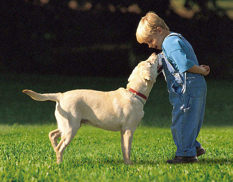 dog running with young boy on fake grass