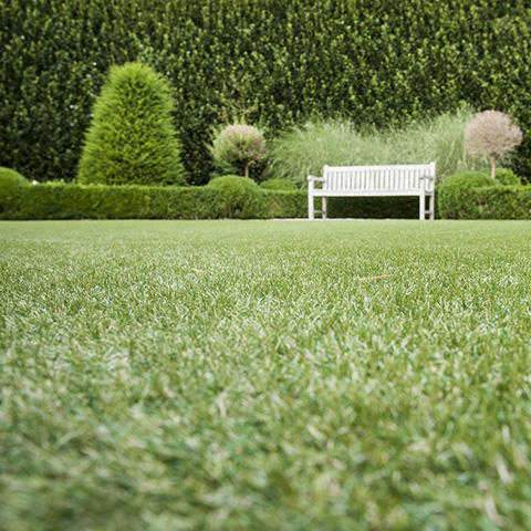 Vision artificial grass garden