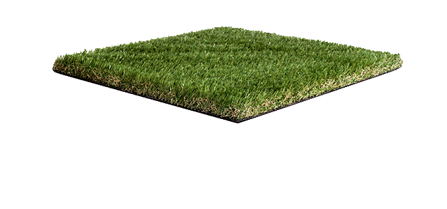 'Enigma' Namgrass artificial grass sample