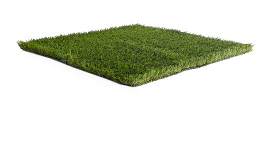 'Horizon' Namgrass artificial grass sample