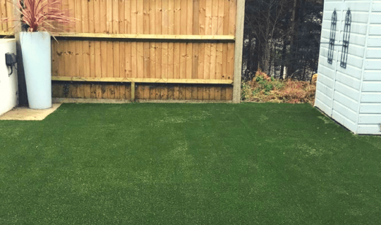 Artificial grass with a shed in the background