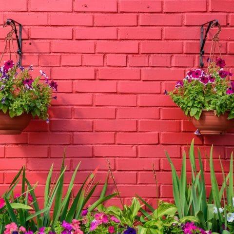 Easy Small Garden Design Updates